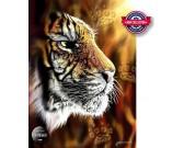 Puzzle Tygrys