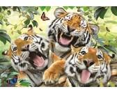 Puzzle Tygrysie selfie