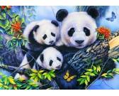 Puzzle Rodzina pand - PUZZLE DLA DZIECI