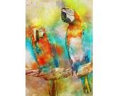 Puzzle Papugi