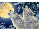 Puzzle Światło księżyca