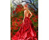 Puzzle Piękność w czerwonej sukience