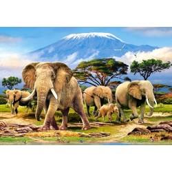 Puzzle Kilimanjaro