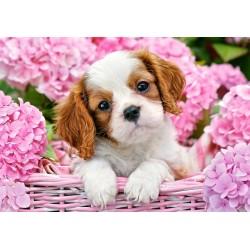Puzzle Pies w różowych kwiatach