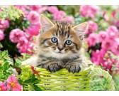 Puzzle Kotek w ogrodzie - PUZZLE DLA DZIECI