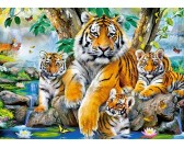 Puzzle Tygrysy przy wodospadzie - PUZZLE DLA DZIECI