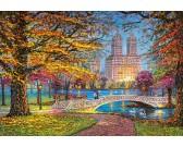 Puzzle Central Park, Nowy Jork