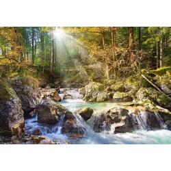 Puzzle Potok leśny