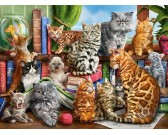 Puzzle Koci dom