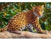 Puzzle Mały jaguar - PUZZLE DLA DZIECI