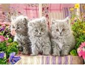 Puzzle Trzy szare kotki - PUZZLE DLA DZIECI