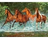 Puzzle Biegnące konie w rzece - PUZZLE DLA DZIECI