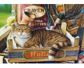 Puzzle Kot w pudełku