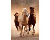 Puzzle Biegnące konie