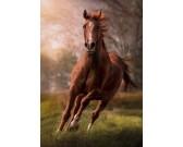 Puzzle Biegnący gniady koń