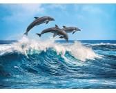 Puzzle Trzy delfiny