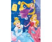 Puzzle Księżniczki - uroczystość - PUZZLE ŚWIECĄCE