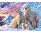 Puzzle Niedźwiedzie polarne