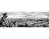 Puzzle Gargulec z Katedry Notre-Dame w Paryżu - PUZZLE PANORAMICZNE