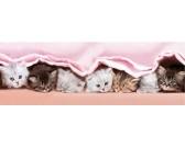 Puzzle Kocięta pod kocem - PUZZLE DLA DZIECI
