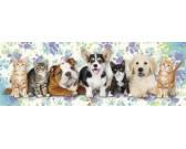 Puzzle Psy i koty - PUZZLE DLA DZIECI