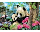 Puzzle Pandy