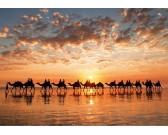 Puzzle Złoty zachód słońca, Australia