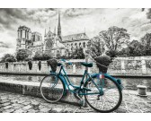 Puzzle Rower w Notre Dame