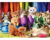 Puzzle Koty w szafie