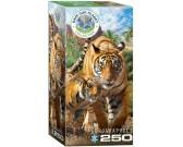 Puzzle Tygrysy