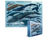 Puzzle Wieloryby i delfiny