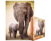 Puzzle Słoń z młodym