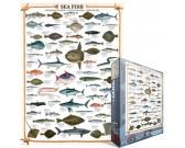 Puzzle Ryby morskie