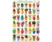 Puzzle Kaktusy