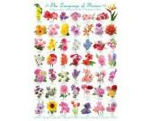 Puzzle Kwiaty