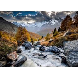 Puzzle Górski potok