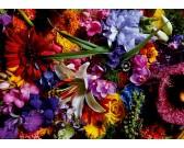 Puzzle Świecące lilie