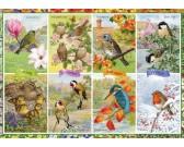 Puzzle Pory roku - ptactwo