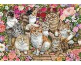 Puzzle Koty w kwiatach