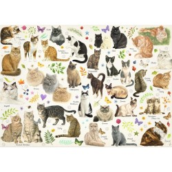 Puzzle Plakat z kotami