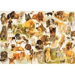 Puzzle Plakat z psami