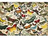 Puzzle Plakat - motyle