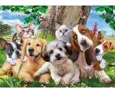 Puzzle Psy i koty