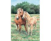 Puzzle Konie na kwitnącej łące