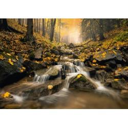 Puzzle Uroczy potok