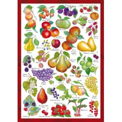 Puzzle Owoce