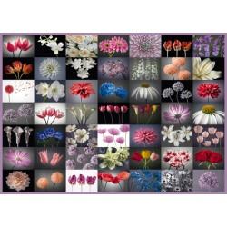 Puzzle Kwiatowe pozdrowenie