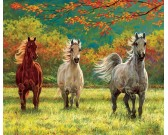 Puzzle Trzy konie - XXL PUZZLE