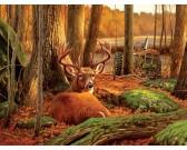 Puzzle Odpoczynek jelenia