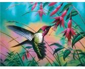 Puzzle Koliber